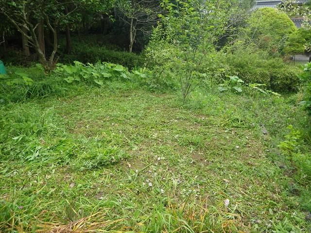第三農園予定地の草刈り