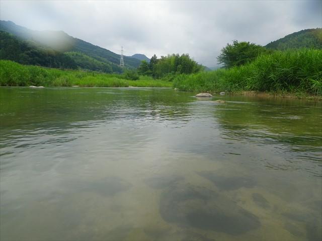 透き通って来た祓川