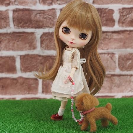 ブログお散歩トイプー717-2