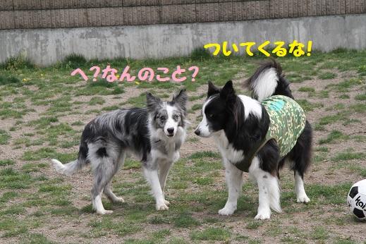 IMG_7168.jpg