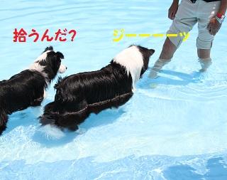 IMG_7404.jpg