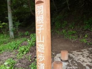 15登山道20160625