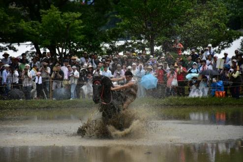 s御田祭 (3)