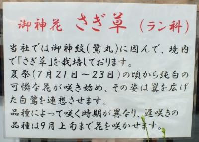 陶器神社13