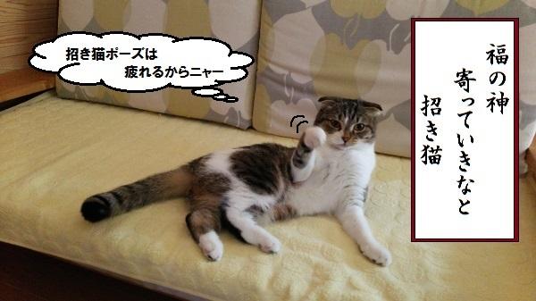 川柳 招き猫
