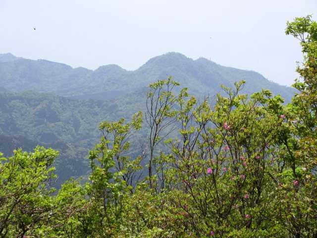 IMG2773JPG一の岳から英彦山を望む