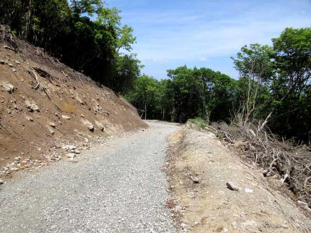 IMG3062JPG以前歩いた登山道は?
