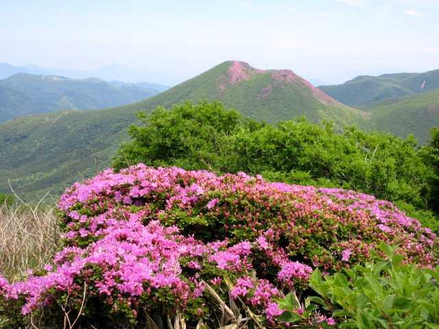 IMG3473JPG南峰から平治岳