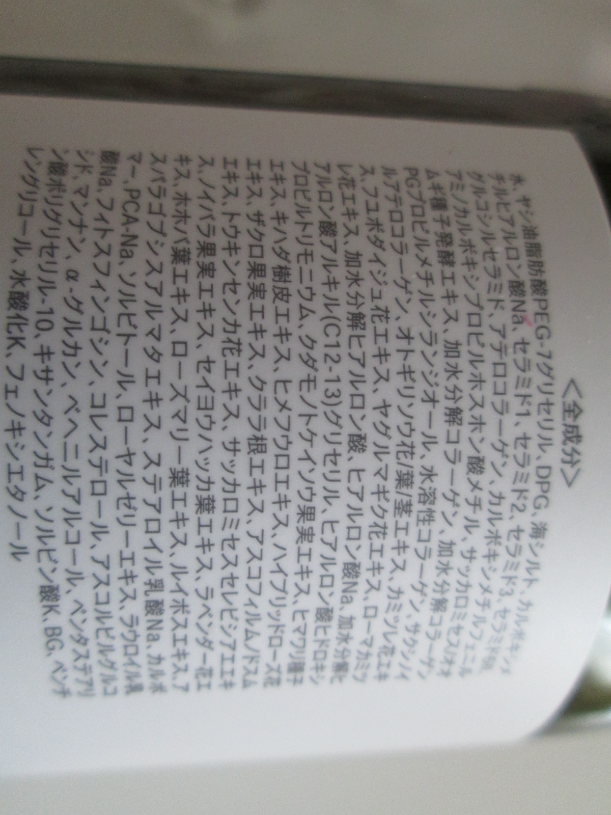 IMG_0269 レパルテ (5)
