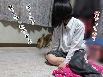 kinako4546.jpg