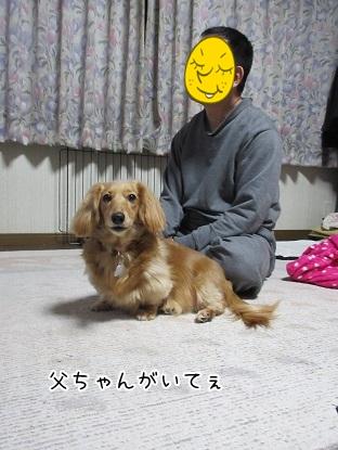 kinako4581.jpg