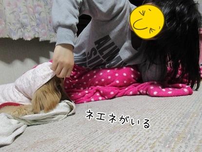 kinako4583.jpg