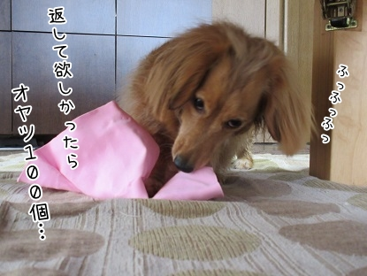 kinako4609.jpg