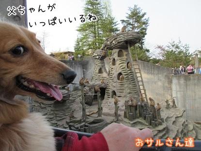 kinako4614.jpg