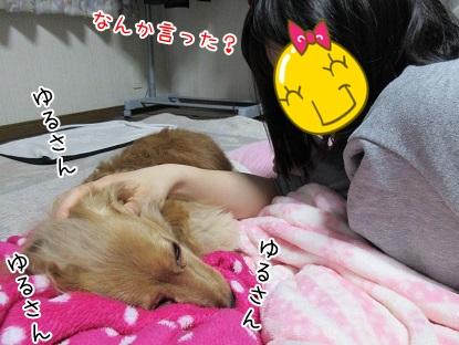 kinako4631.jpg