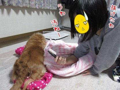 kinako4639.jpg