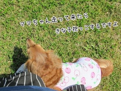kinako4664.jpg