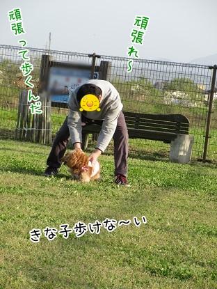 kinako4675.jpg
