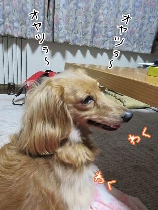 kinako4700.jpg
