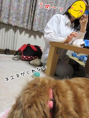 kinako4701.jpg