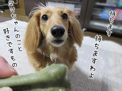 kinako4785.jpg