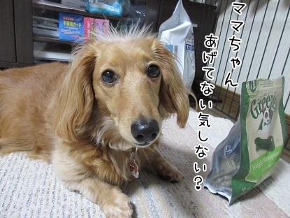 kinako4789.jpg