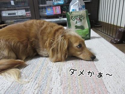 kinako4790.jpg