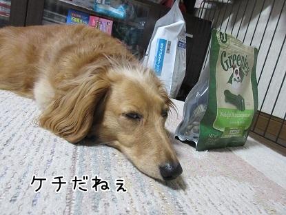 kinako4795.jpg