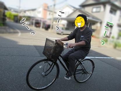 kinako4815.jpg