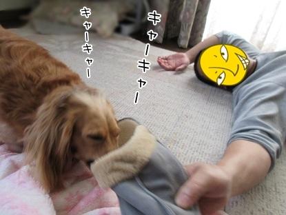 kinako5059.jpg