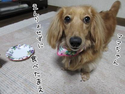 kinako5071.jpg