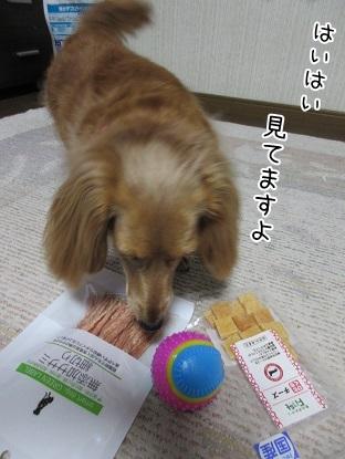 kinako5074.jpg