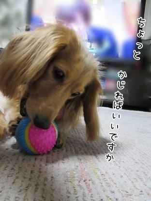 kinako5076.jpg