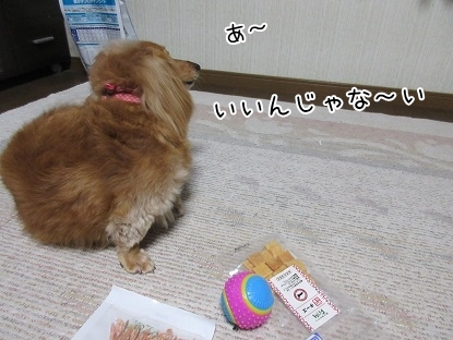 kinako5077.jpg