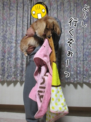 kinako5083.jpg