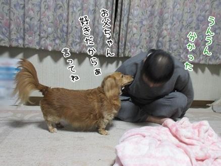 kinako5096.jpg