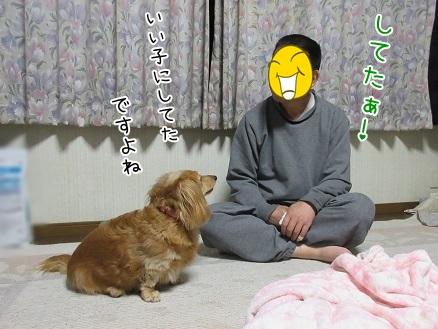 kinako5097.jpg
