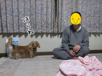 kinako5098.jpg