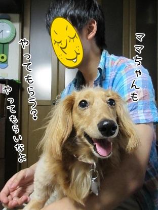 kinako5104.jpg
