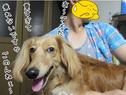 kinako5105.jpg