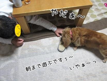 kinako5171.jpg