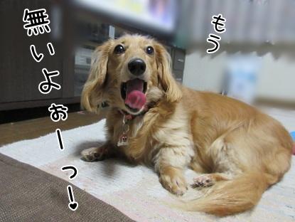 kinako5250.jpg