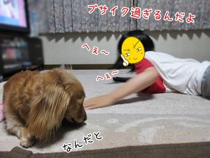 kinako5319.jpg