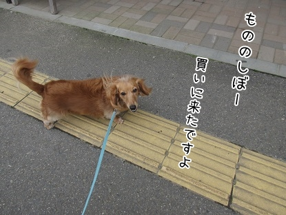 kinako5371.jpg