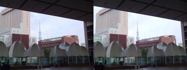 江戸東京博物館からの東京スカイツリー①(平行法)