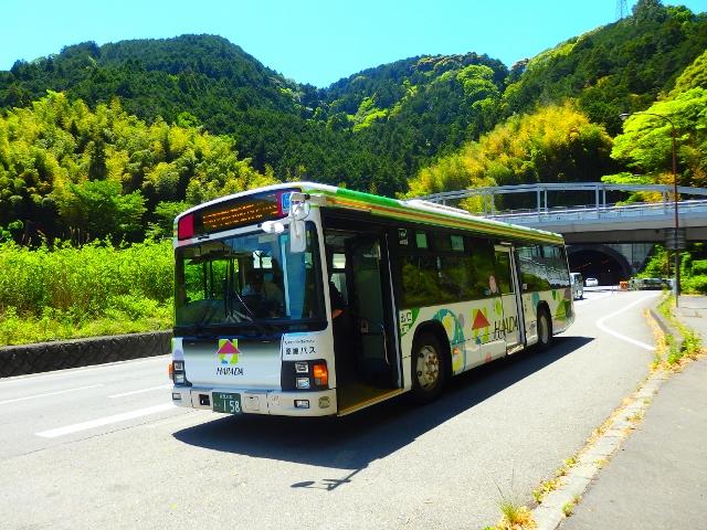 P5042032 (640x480)