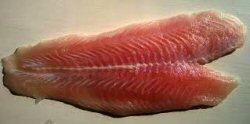 01b 250 fish fillet