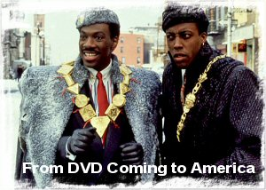 01e 300 Coming to America DVD cover