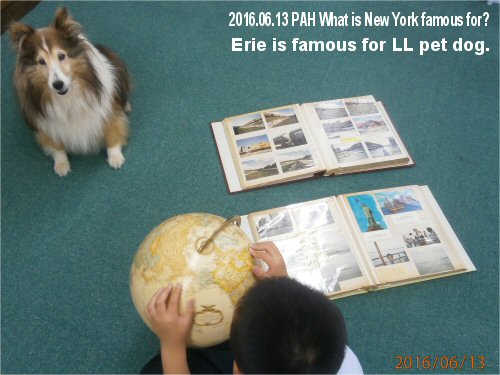 02a 500 20160613 Erie is famous for LL pet dog