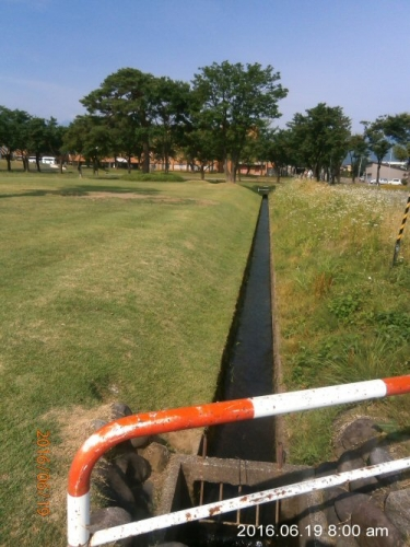 03a 500 20160619 用水 cut lawn